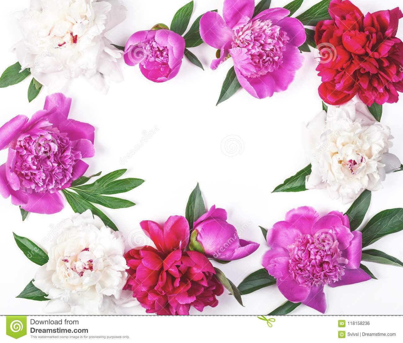 Floral Frame Made Of Pink And White Peony Flowers And Leaves