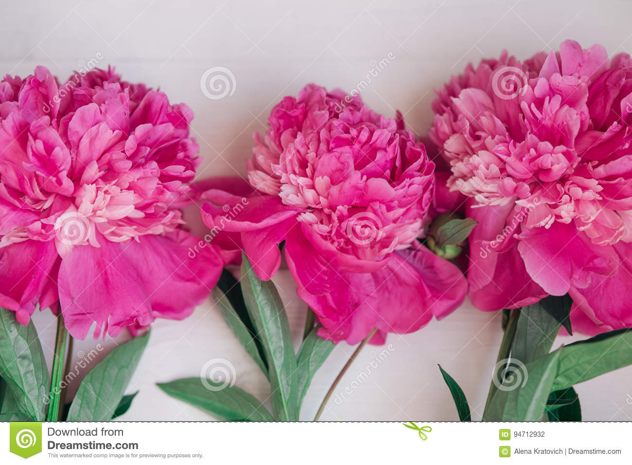Download Floral Frame With Pink Peonies On Wooden Background Mothers Day Or Womens