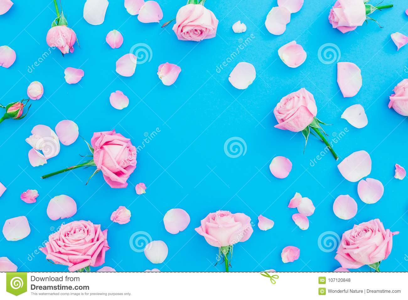 98b9482504b2c Floral Frame Of Roses Buds And Petals On Blue Background. Flat Lay ...
