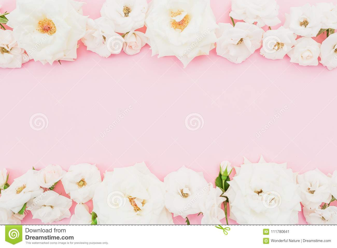 Floral frame with white roses on pink background. Flat lay, top view. Pastel background.