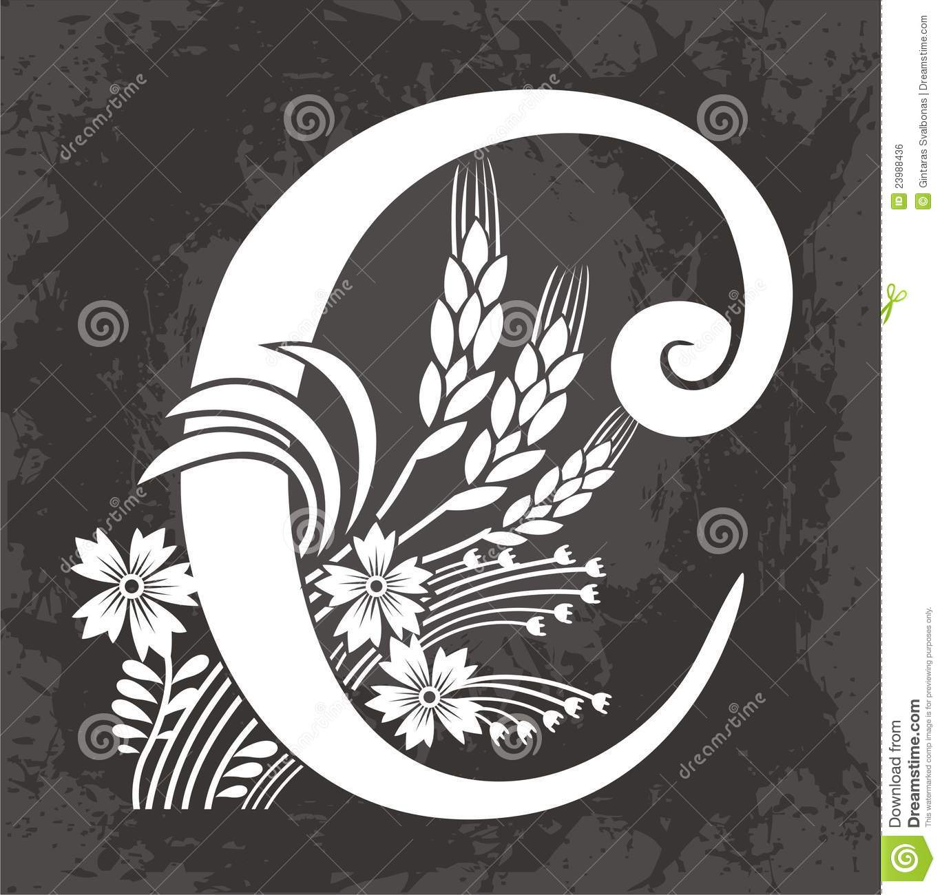 Floral Letter C Royalty Free Stock Image