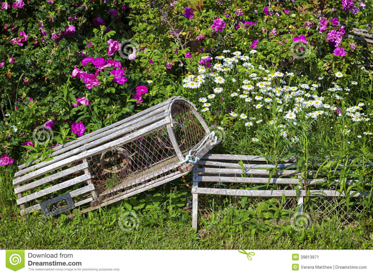 Floral Lobster Traps Stock Photo - Image: 39813971
