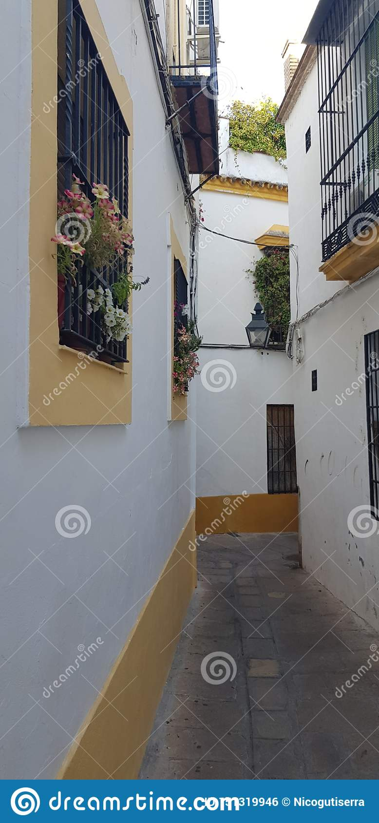 Andalusian Floral street garden
