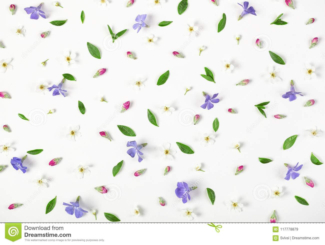 Floral pattern made of spring flowers, lilac wildflowers, pink buds and leaves isolated on white background. Flat lay.