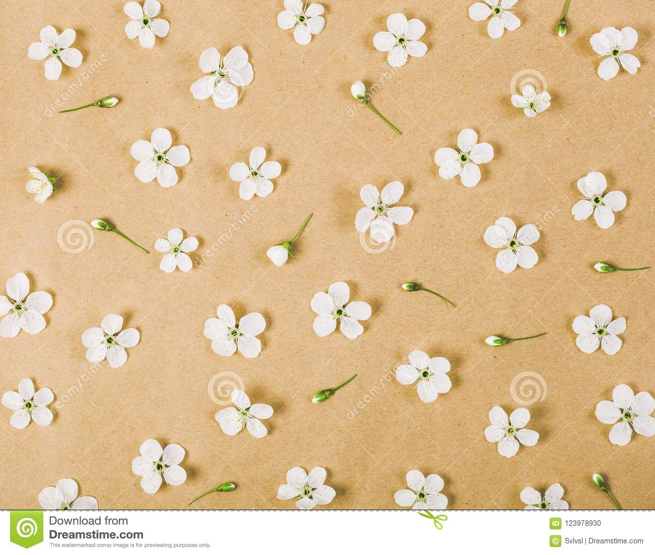 Floral pattern made of white spring flowers and buds on brown paper background. Flat lay.
