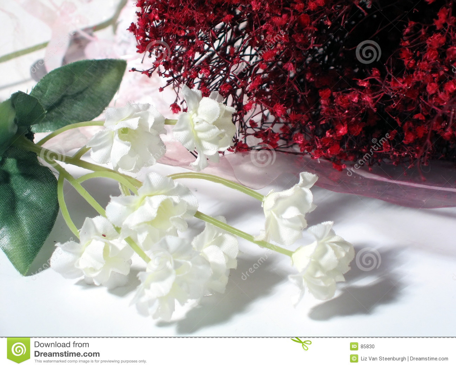 Floral rouge et blanc