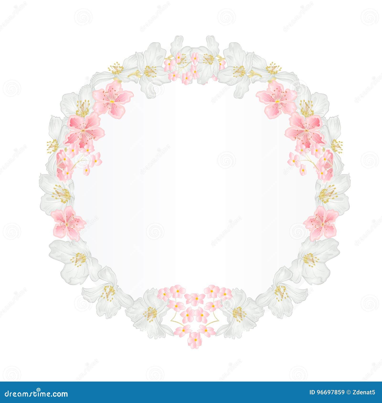 8ad4bb063 Floral round frame with Jasmine and sakura vintage festive background  illustration