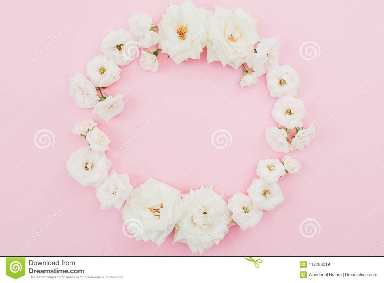 Floral round frame made of white roses on pink background. Flat lay, top view. Pastel background.
