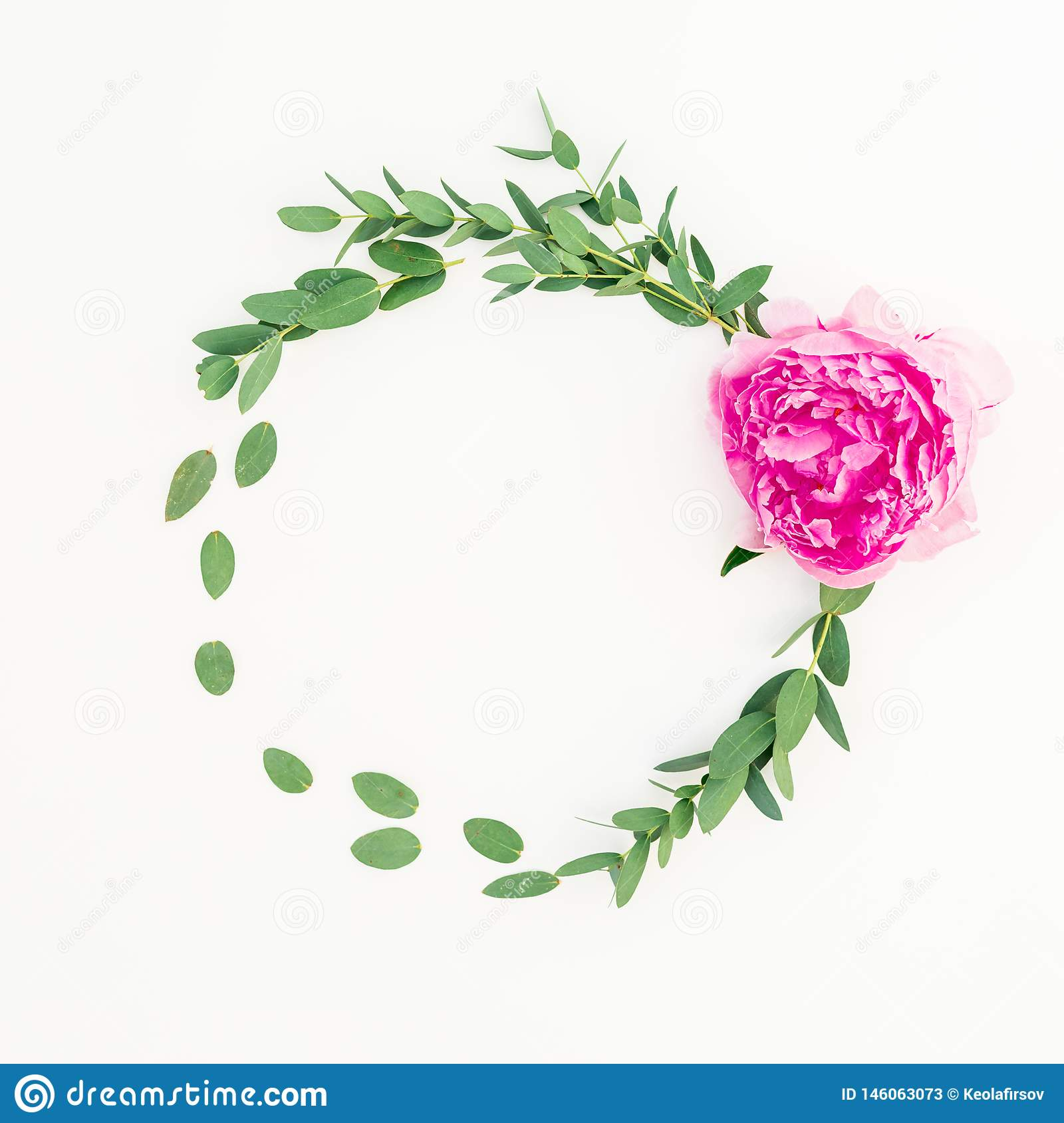 Floral round frame of pink peony flower, hypericum and eucalyptus on white background. Flat lay