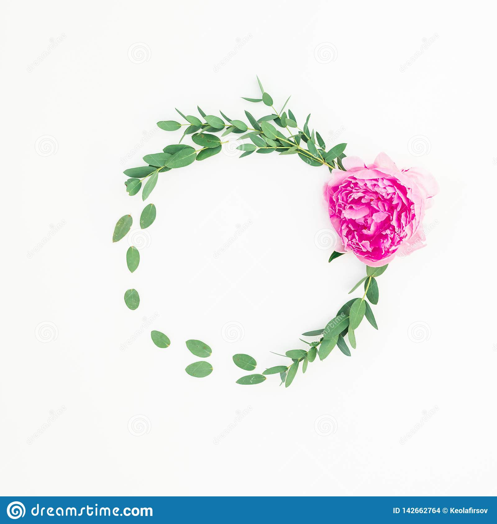 Floral round frame with pink peony flower, hypericum and eucalyptus on white background