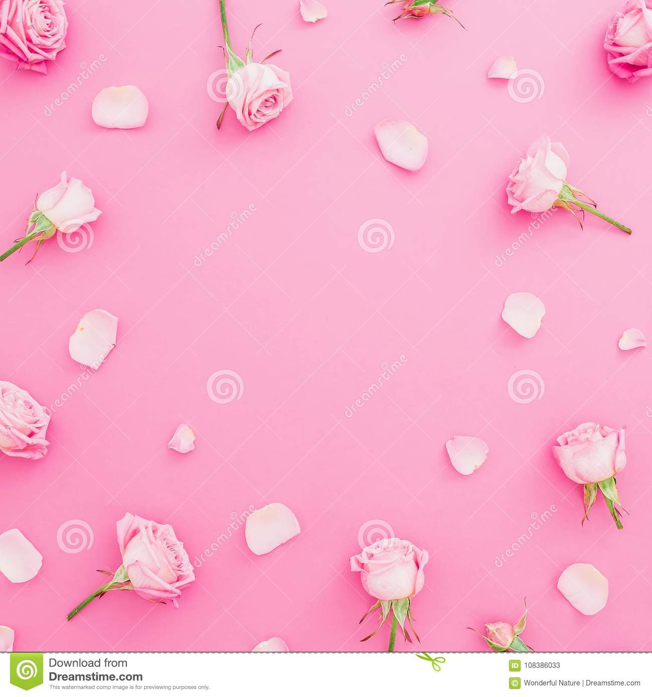 Floral round frame with roses flowers and petals on pastel pink background. Flat lay, Top view. Valentines background