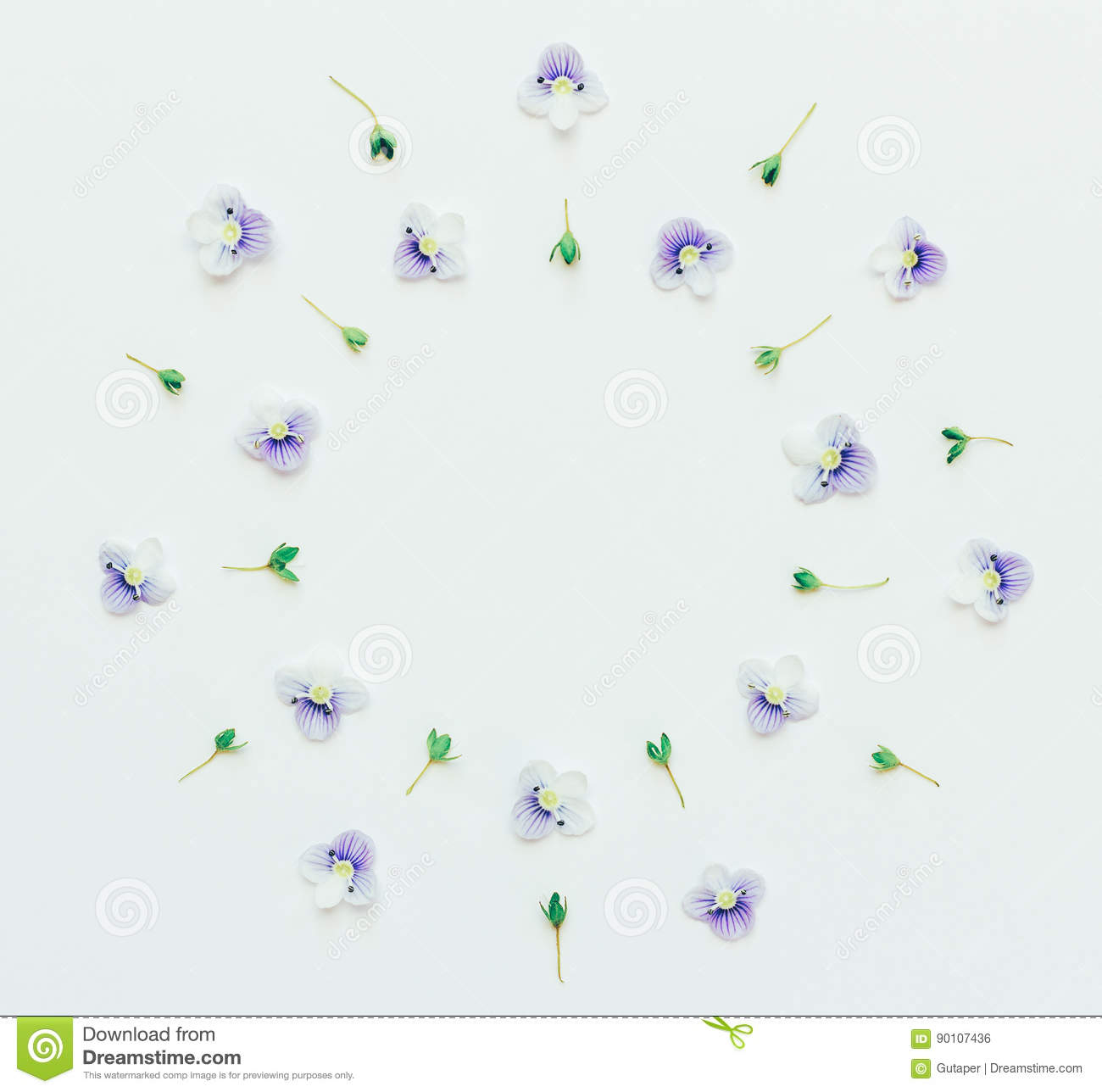 Floral round frame of small blue flowers on a white background with space for text