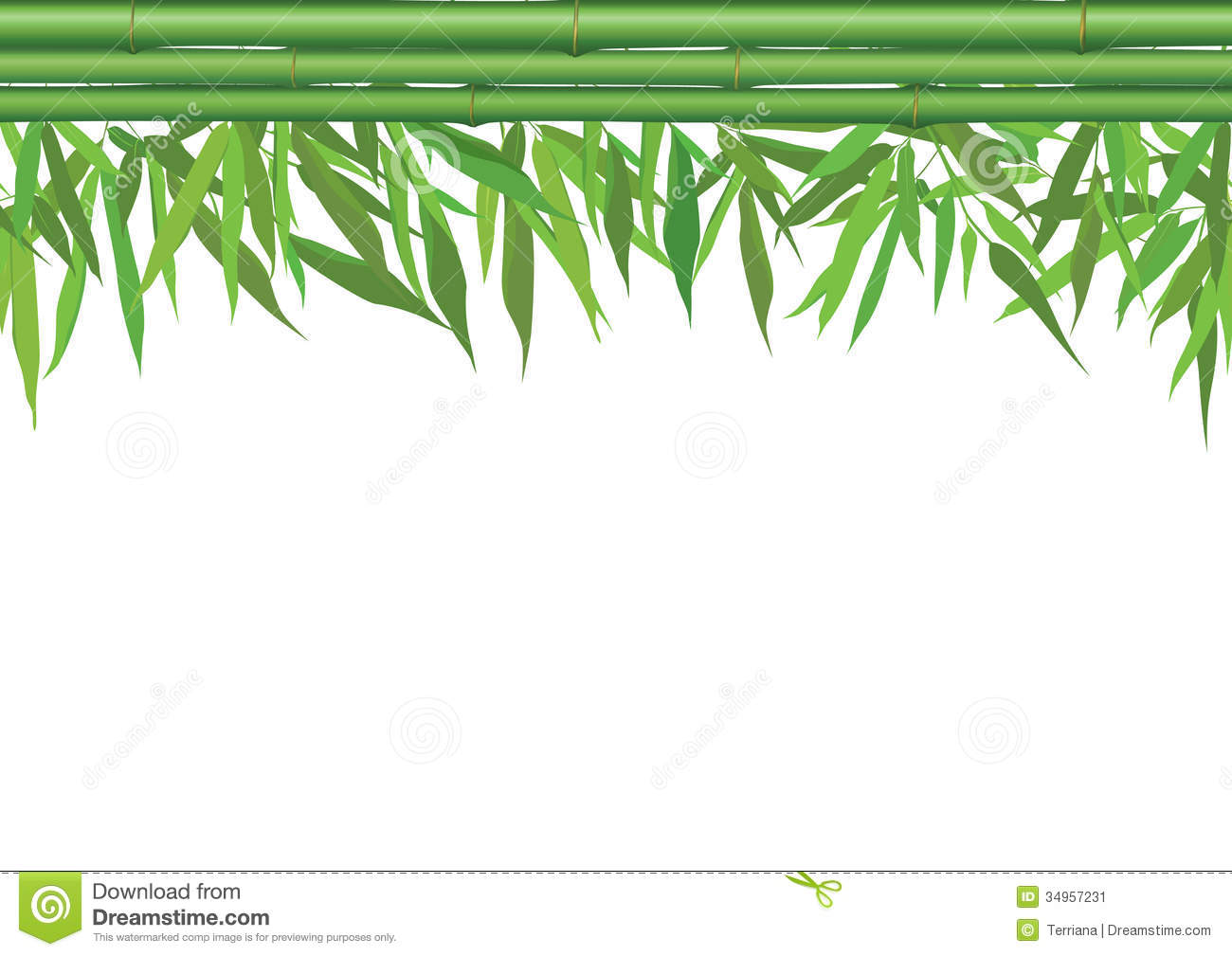 Floral Seamless Border With Bamboo Leaves, Stem And Copy Space Stock ...