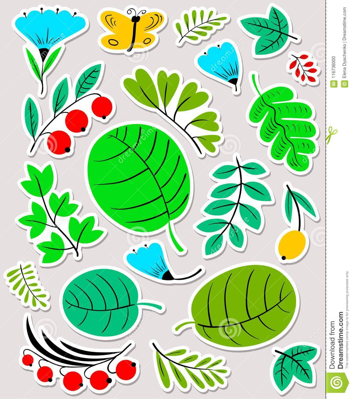 Floral set. Flowers and leaves collection. Vector illustration w