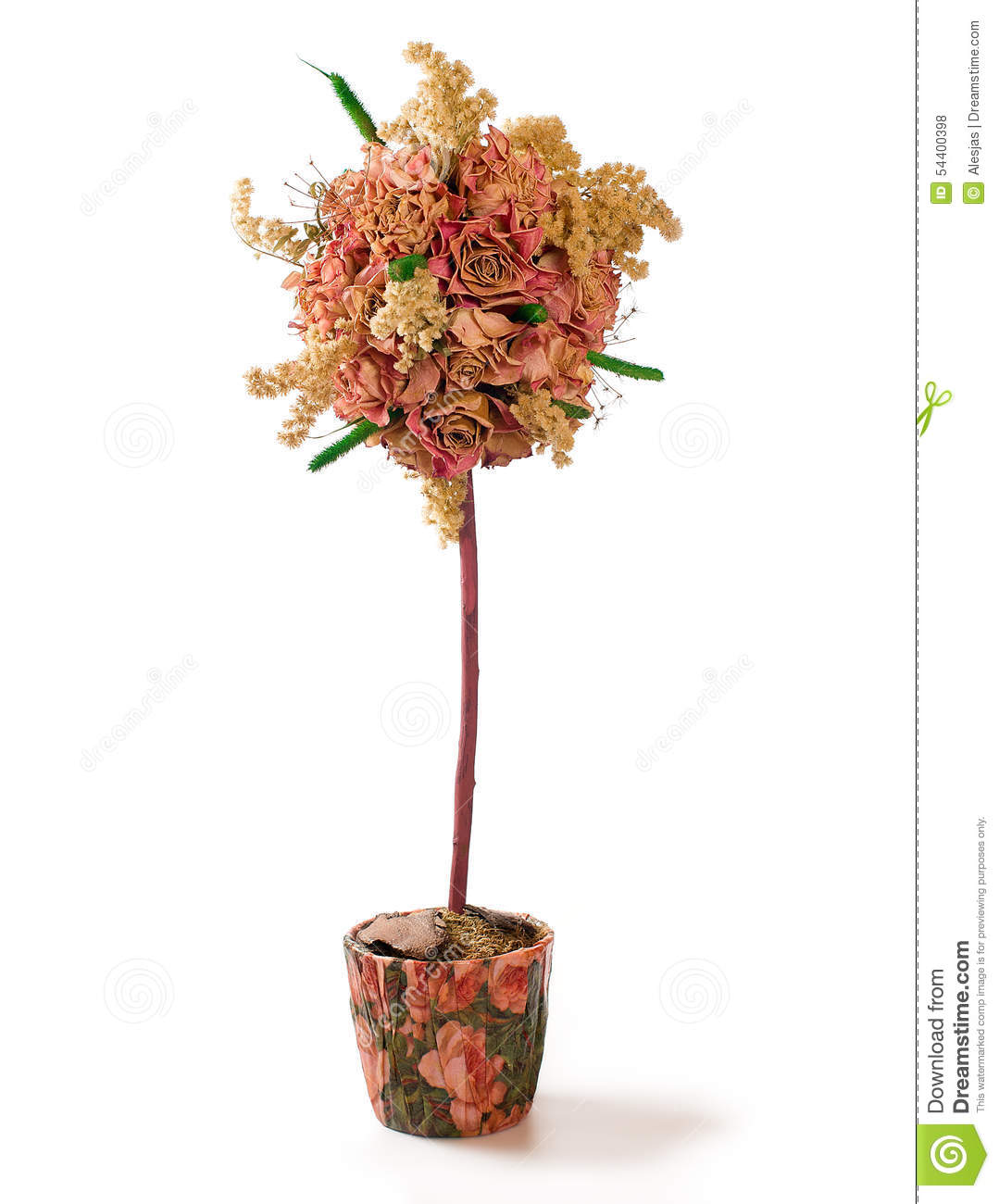 Floral Topiary Over White Background Stock Photo Image Of Flowers Materials 54400398