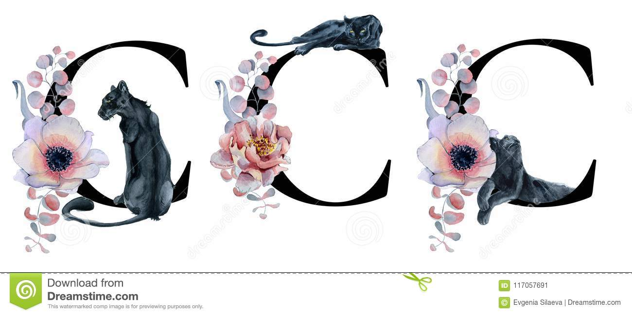Floral Watercolor Alphabet  Monogram Initial Letter C