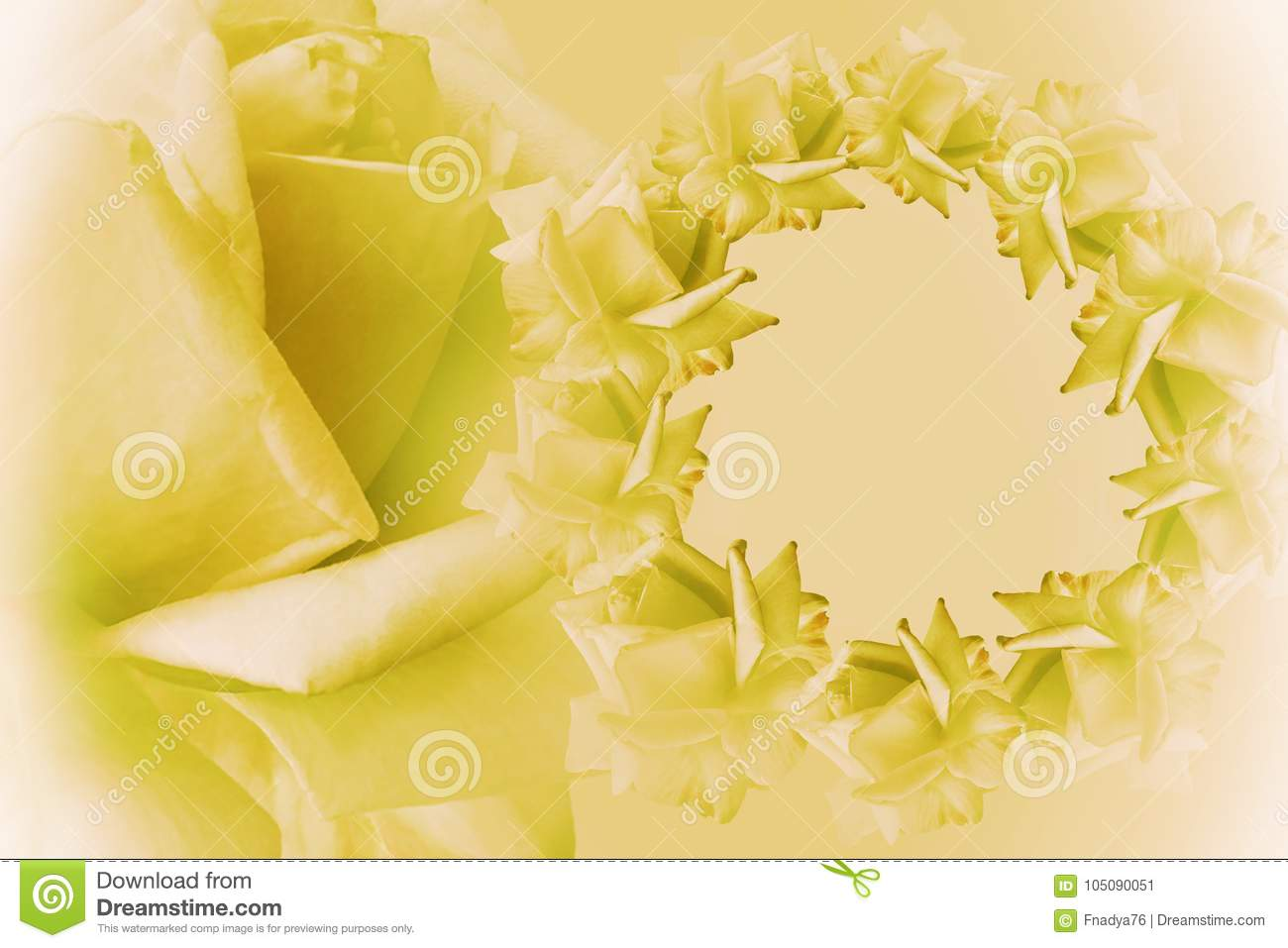 Floral Yellow White Beautiful Background Flower Composition Frame