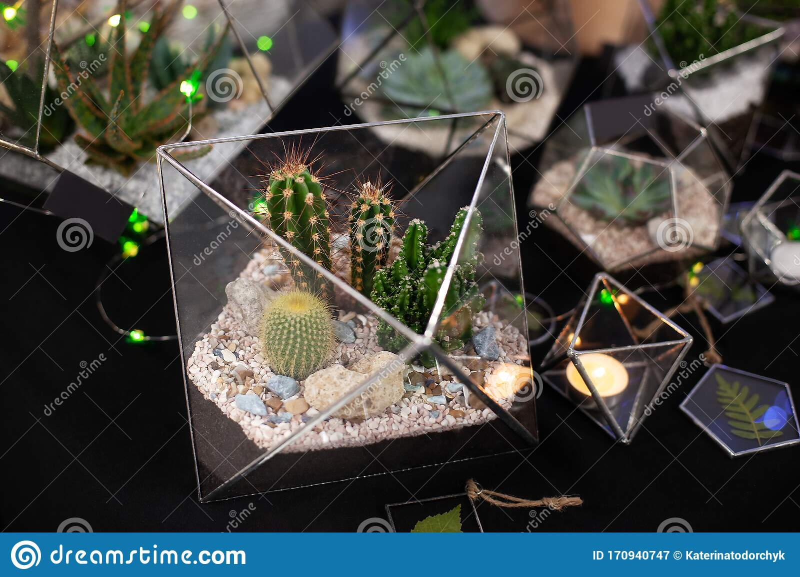 Florarium Composition Of Cactus And Succulents Stone And Sand Element Of Interior Home Decor Glass Terrarium Glass Florarium Stock Image Image Of Hobby Flowerpot 170940747