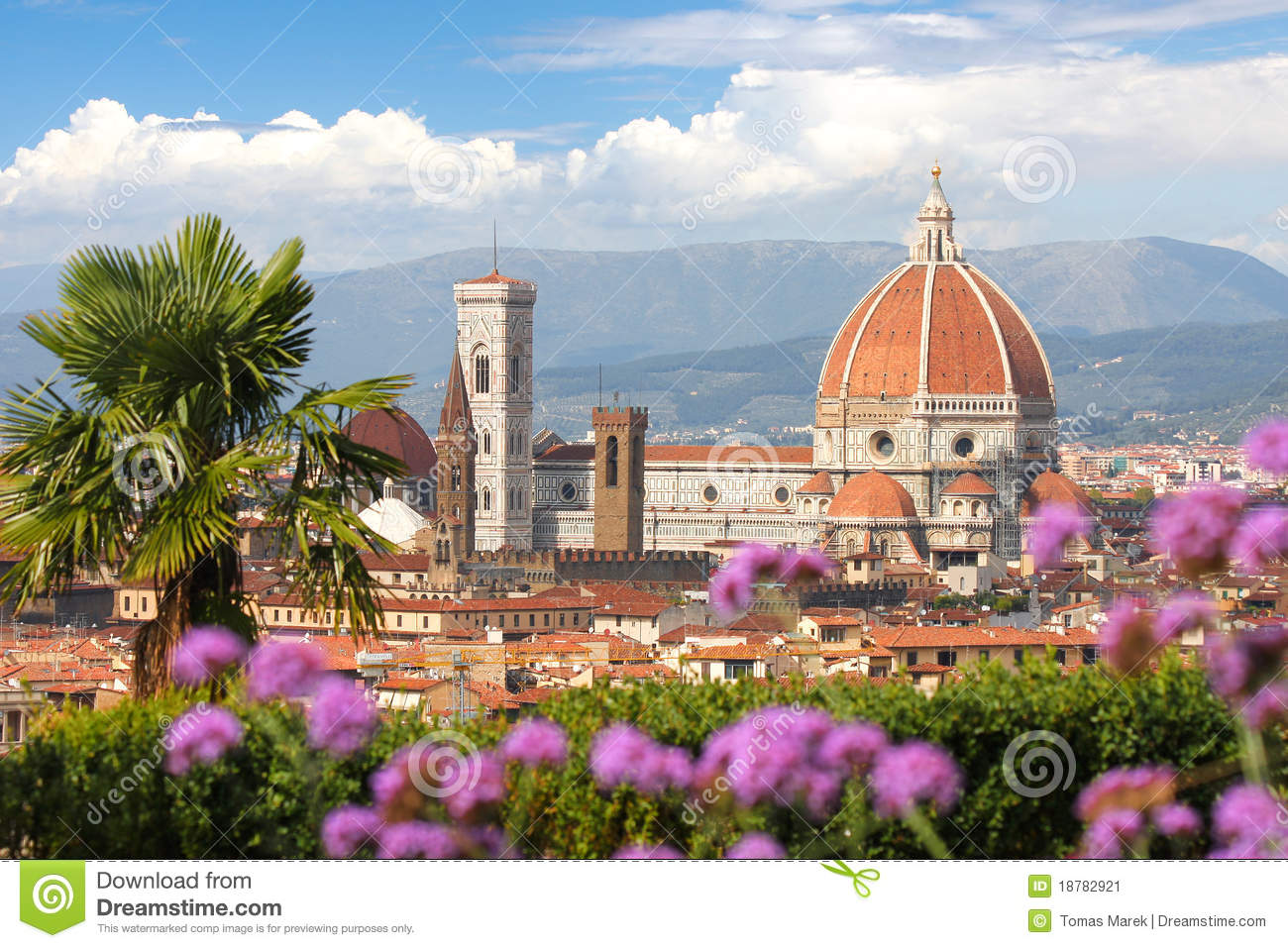 Florence Cathedral With Flowers Italy Stock Image Image