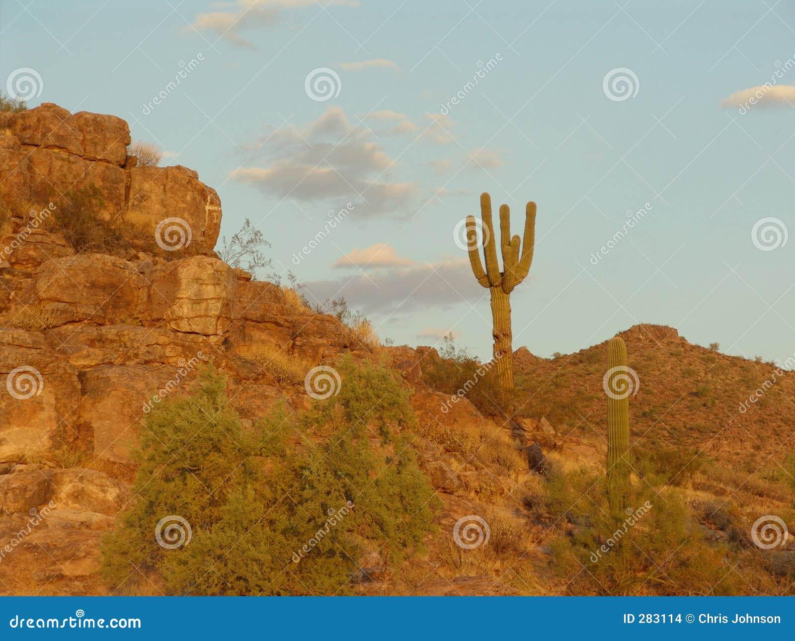 Florencia, Arizona
