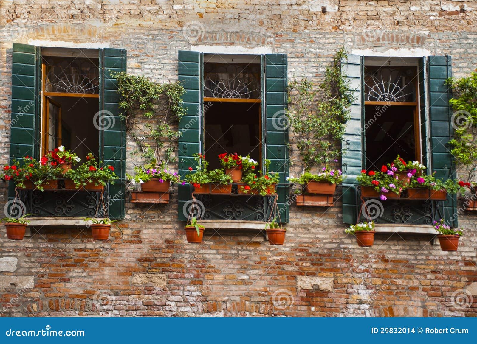 Caixa da flor, Veneza, Italia