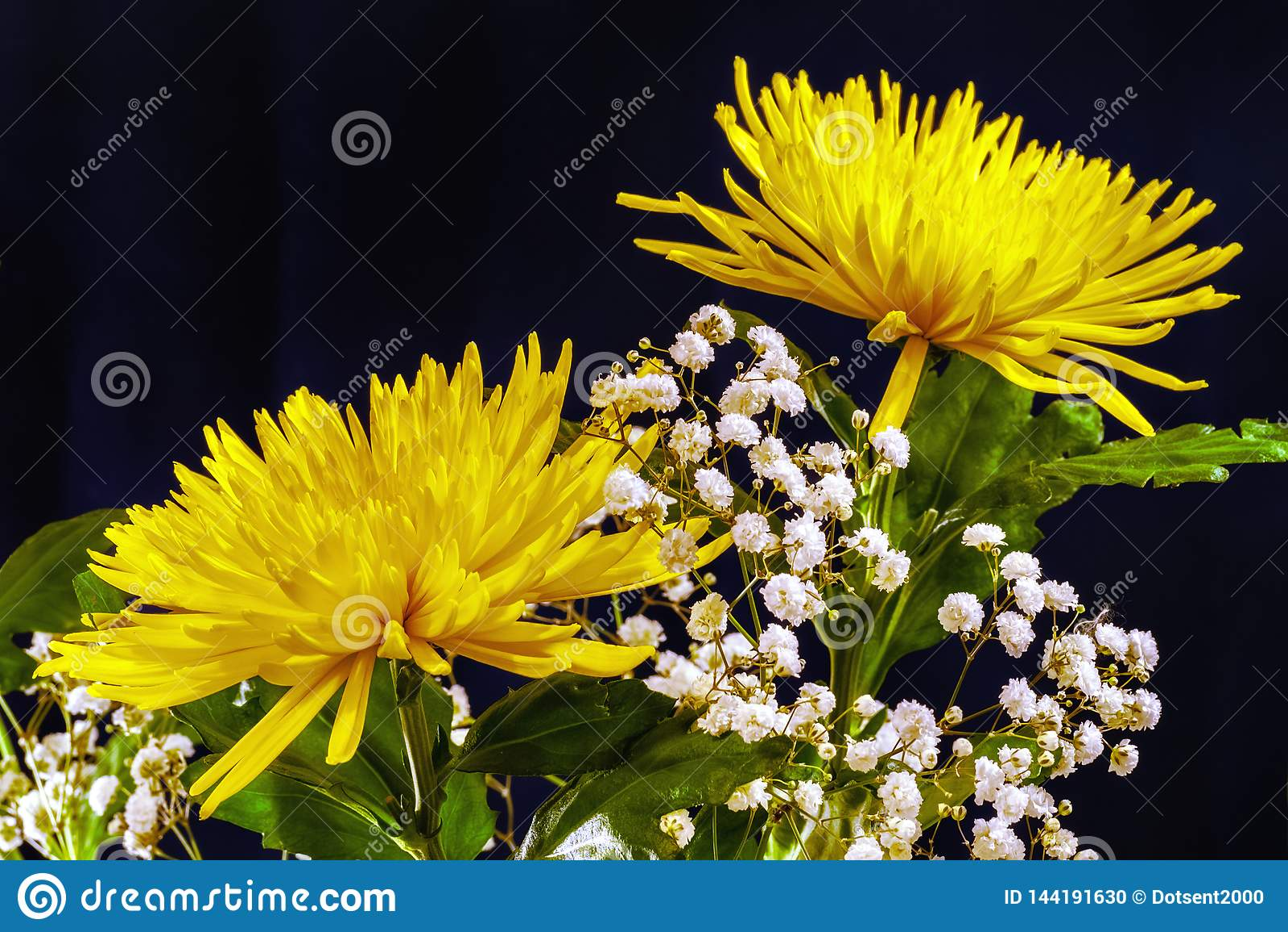 Flores amarillas en negro