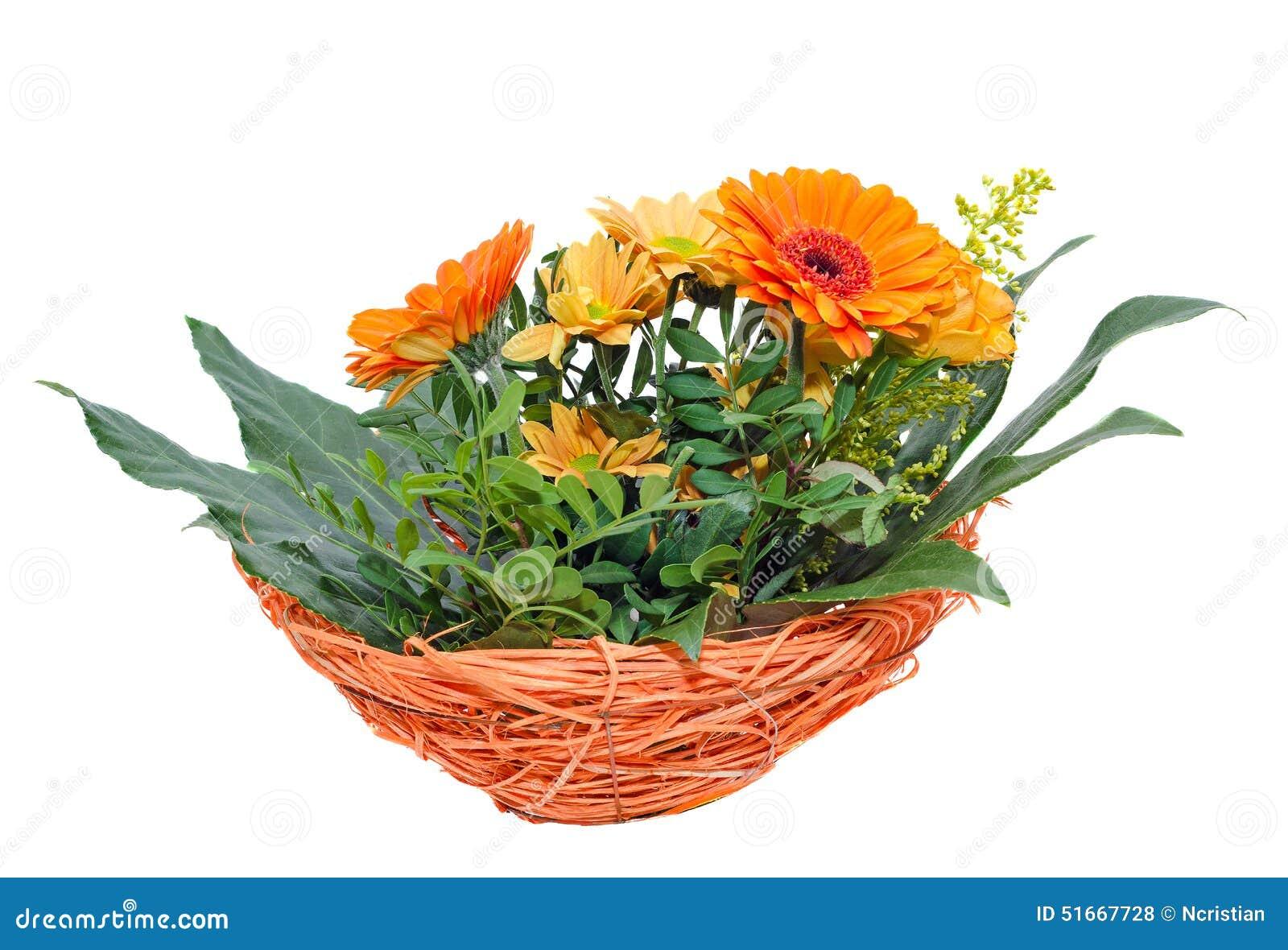 Flores Anaranjadas De Los Crisantemos También Llamadas