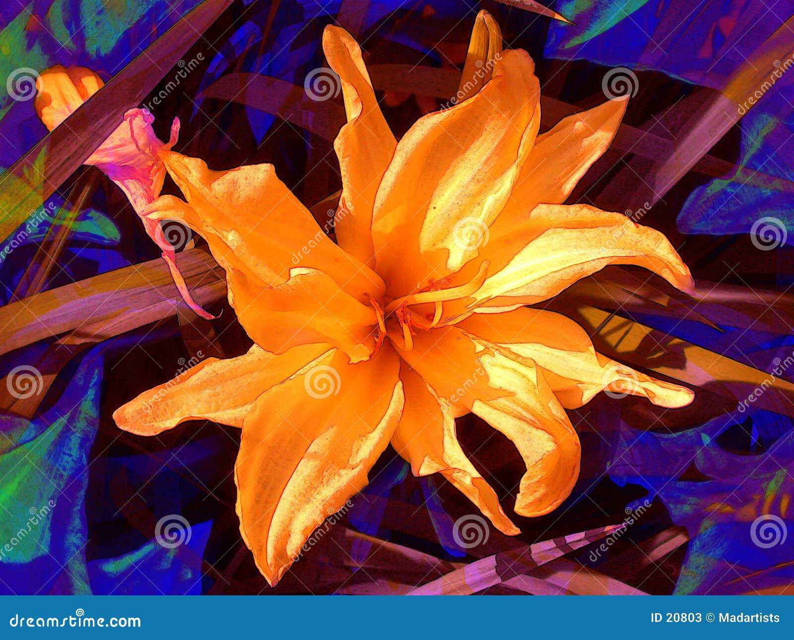 Flores anaranjados de los pétalos de la flor