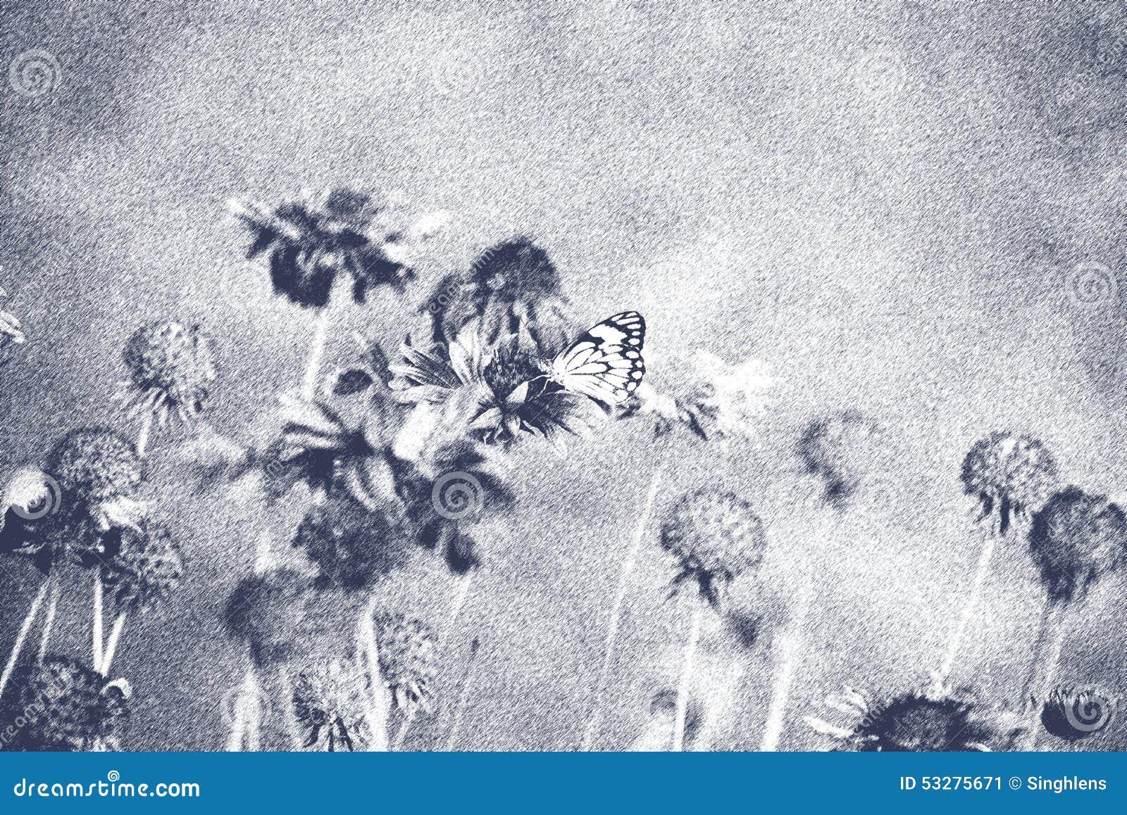 Flores Bonitas Con La Mariposa En Forma De Arte Blanco Y