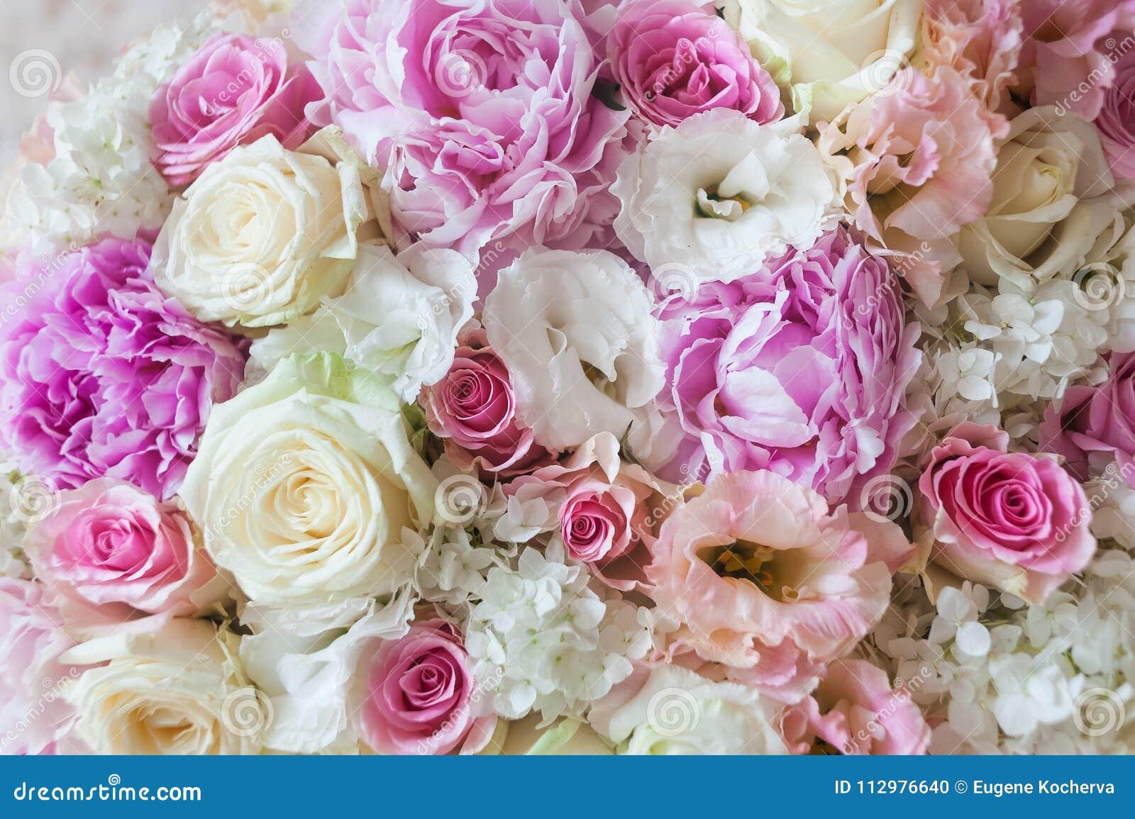 Flores bonitas E