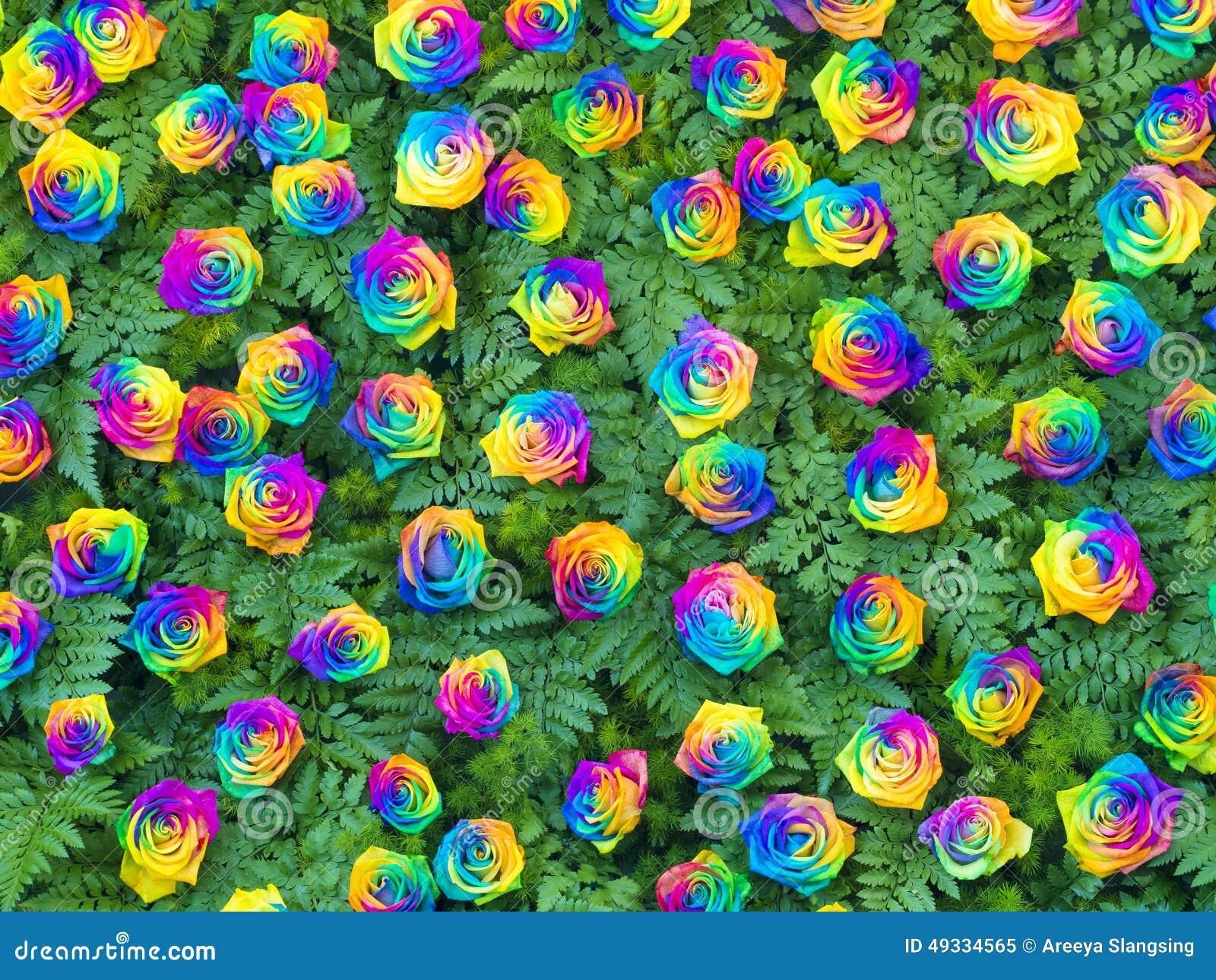 Flores Color De Rosa Reales Que Adornan En La Pared