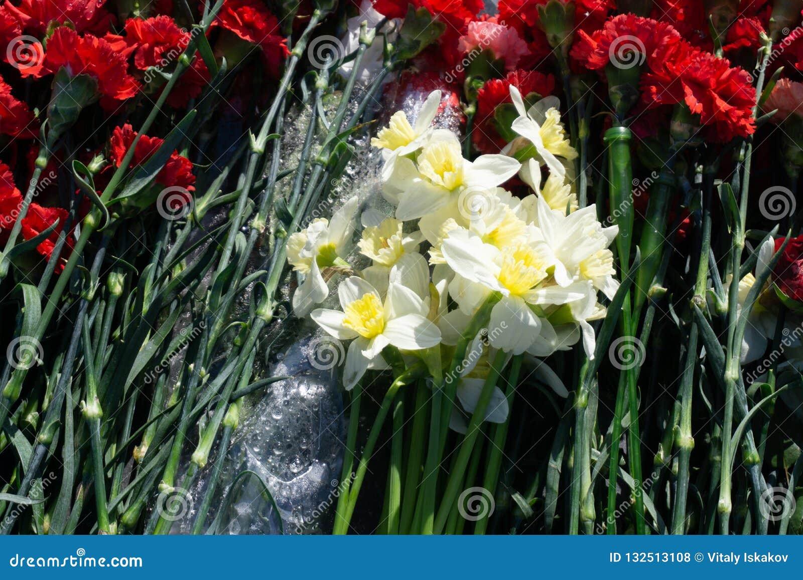 Flores coloridas do cravo na loja