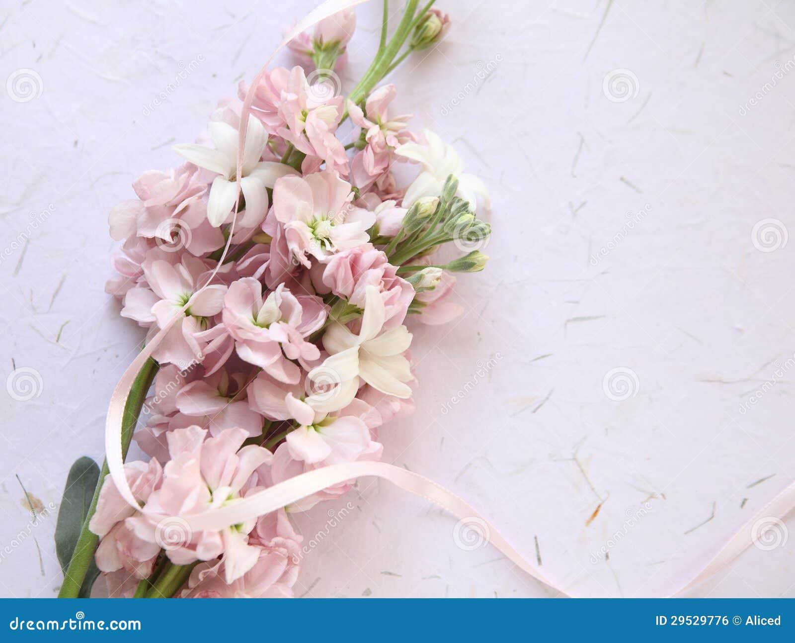 Flores cor-de-rosa da mola no fundo textured