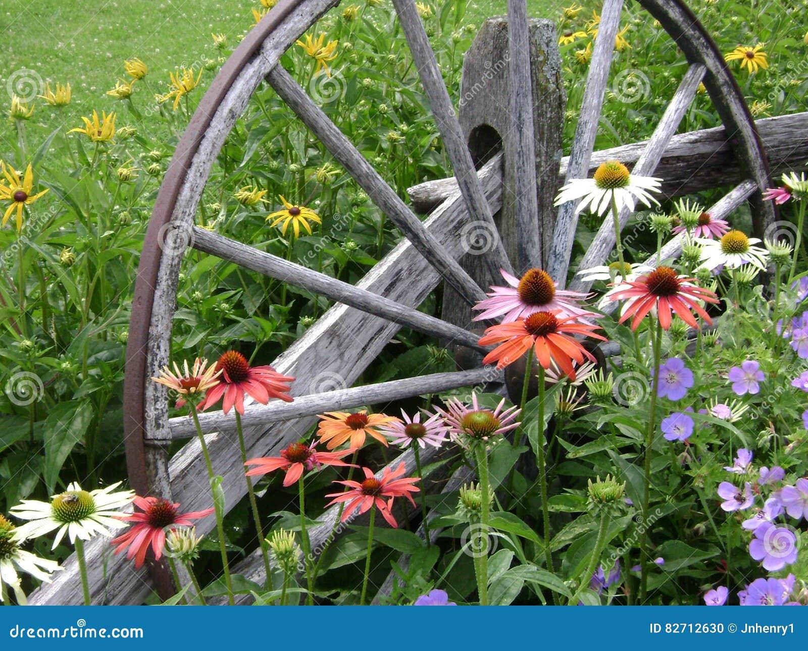 Flores da roda de vagão
