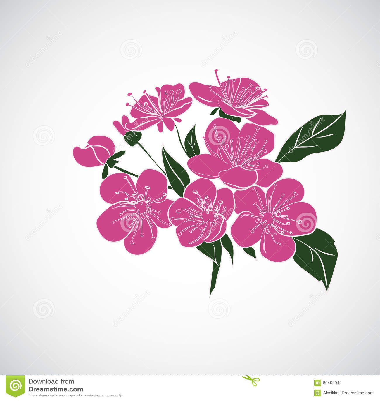 Flores de cerejeira do galho