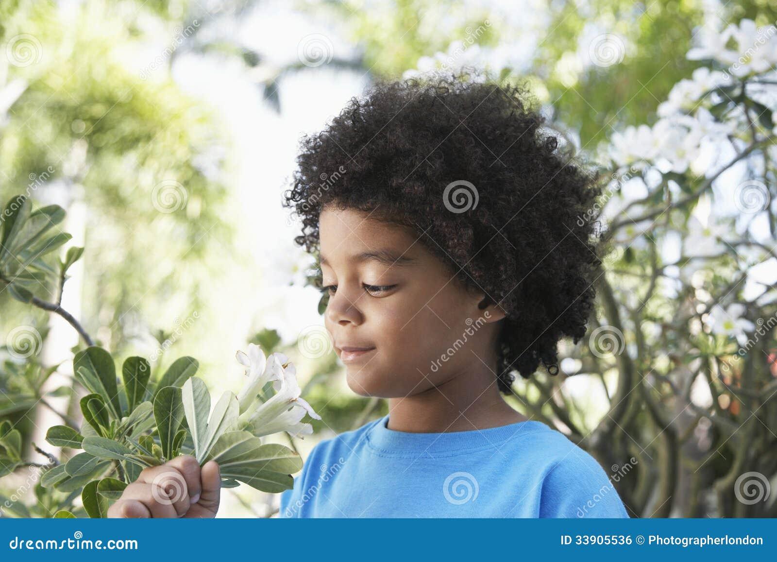 Flores de cheiro do menino no jardim