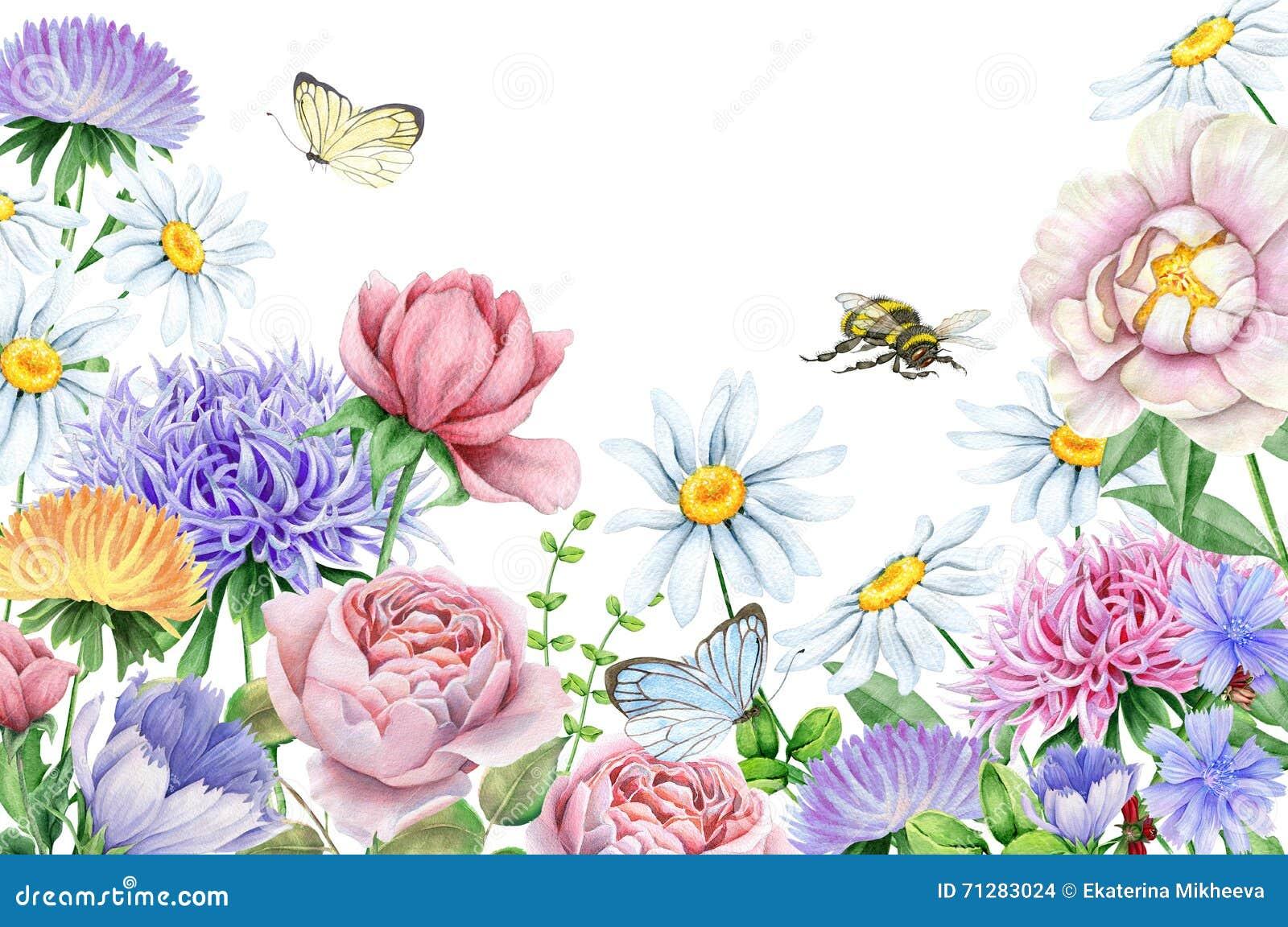 Flores De La Acuarela Y Mariposas Y Abeja En Blanco Stock