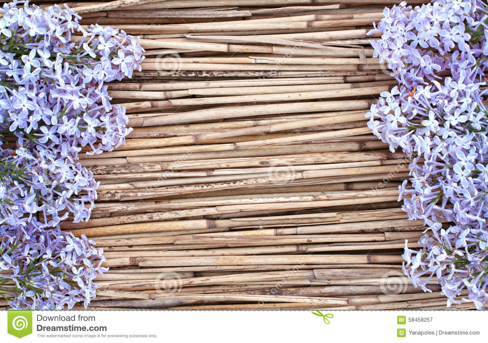 Flores de la lila en fondo de lámina seco