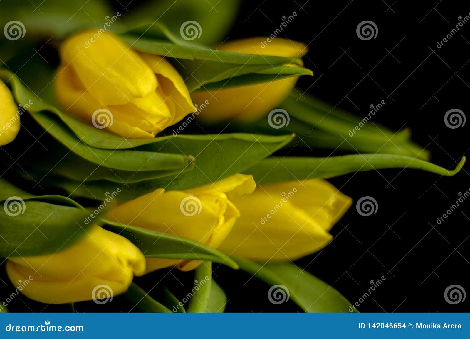 Flores de la primavera - concepto perfecto para los medios sociales