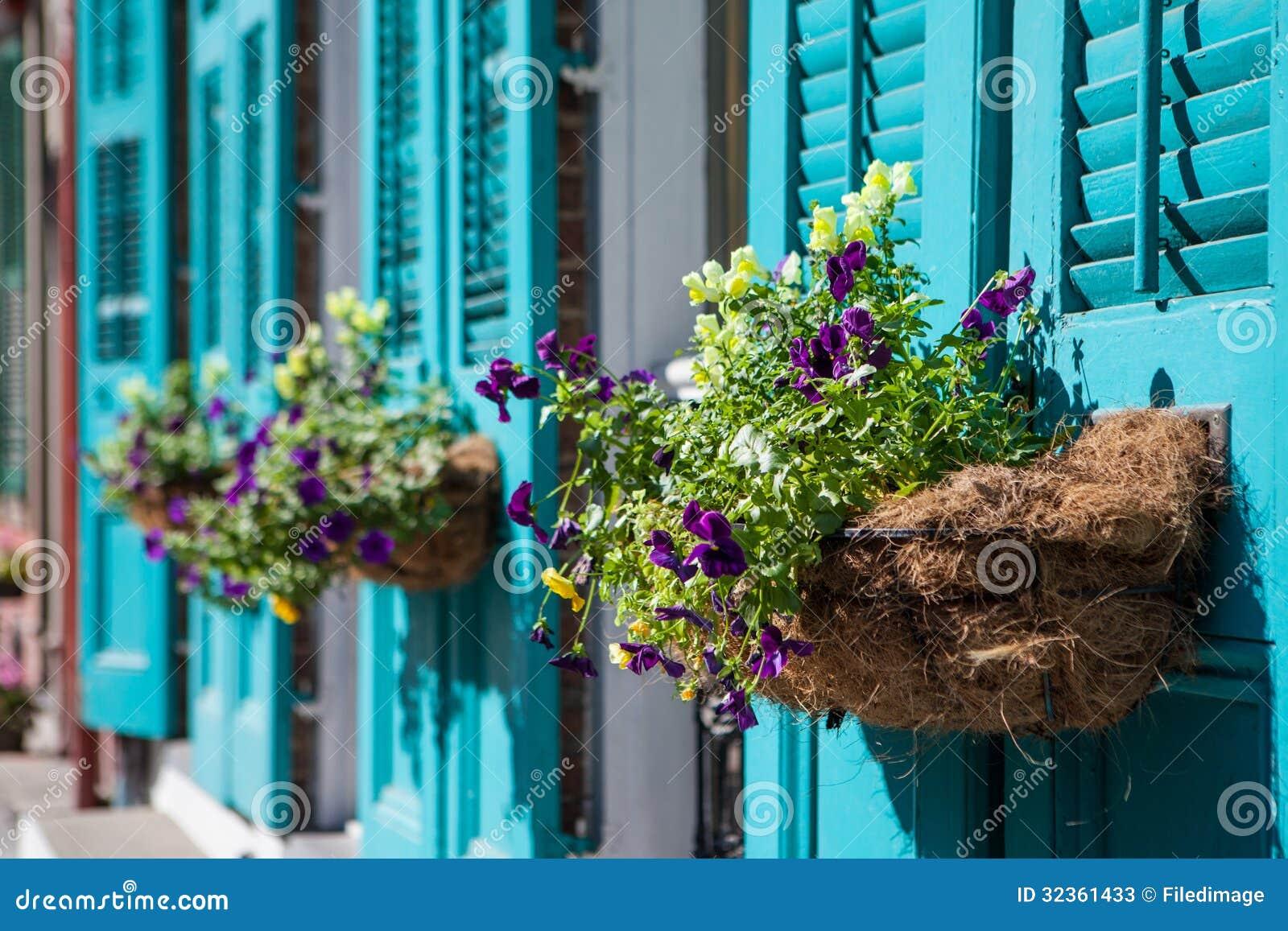 Flores de Nova Orleães
