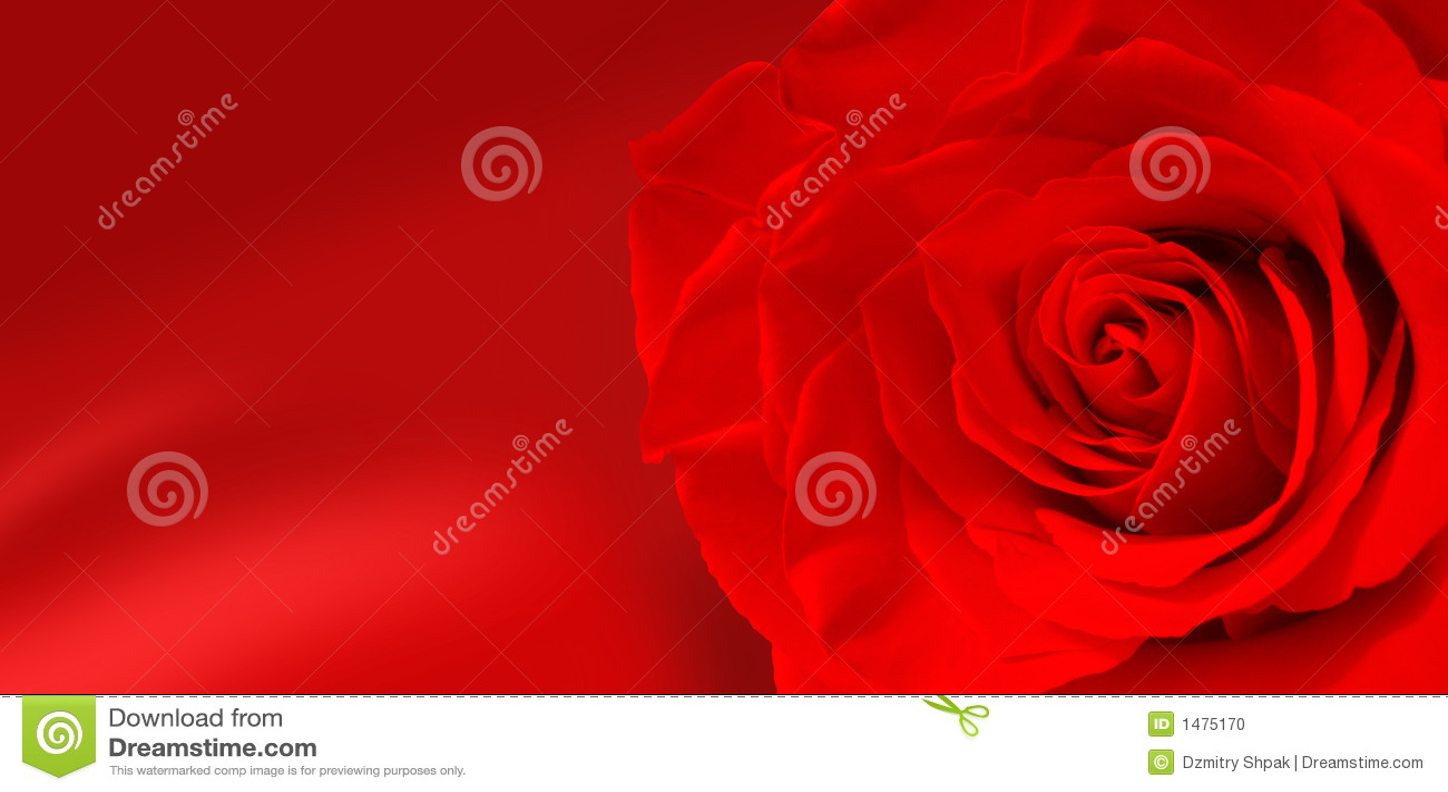Flores de Rose