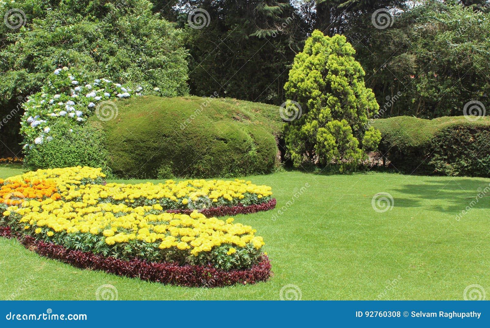 Flores del jardín con los árboles