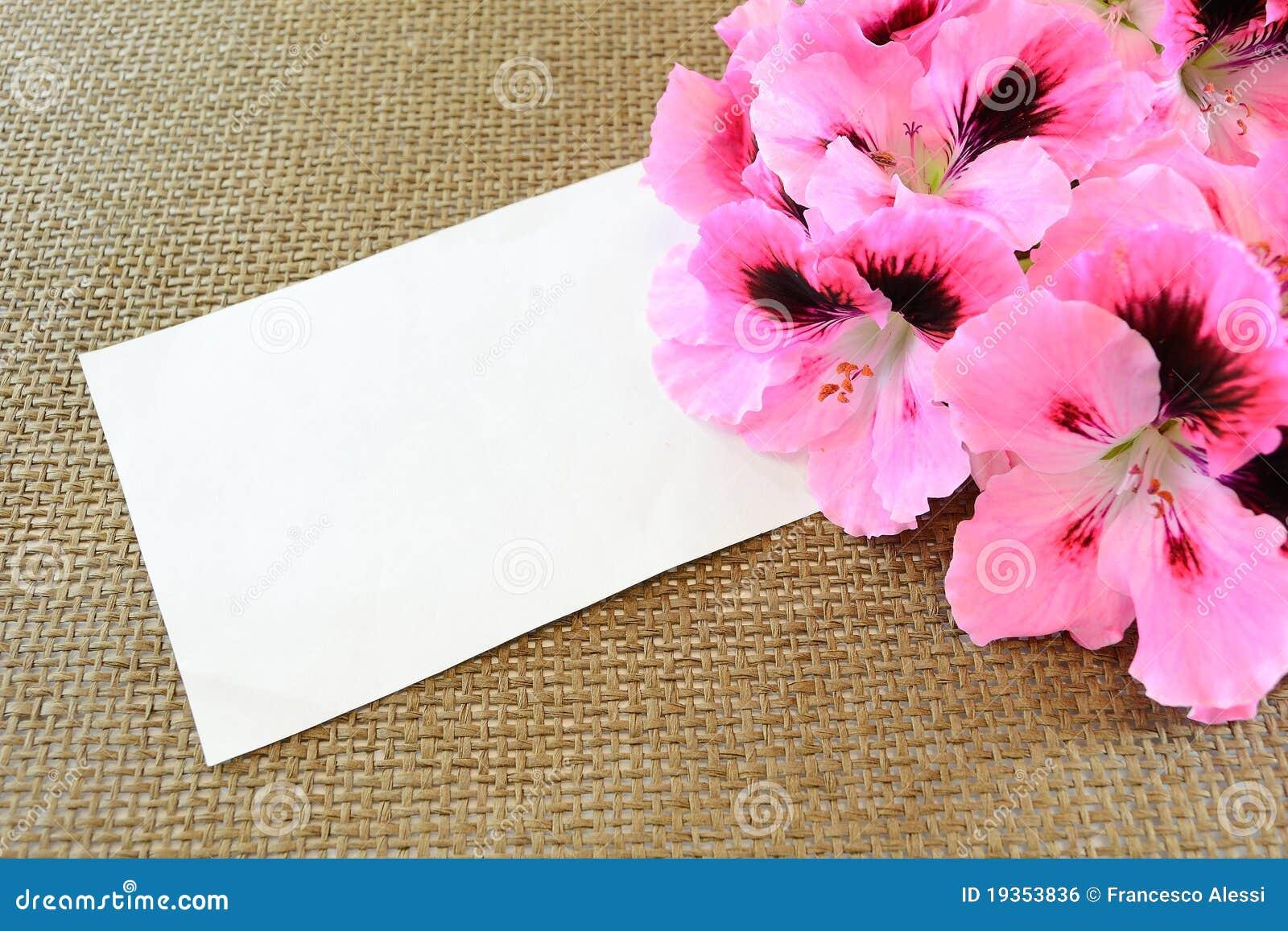 Flores do cartão e do gerânio