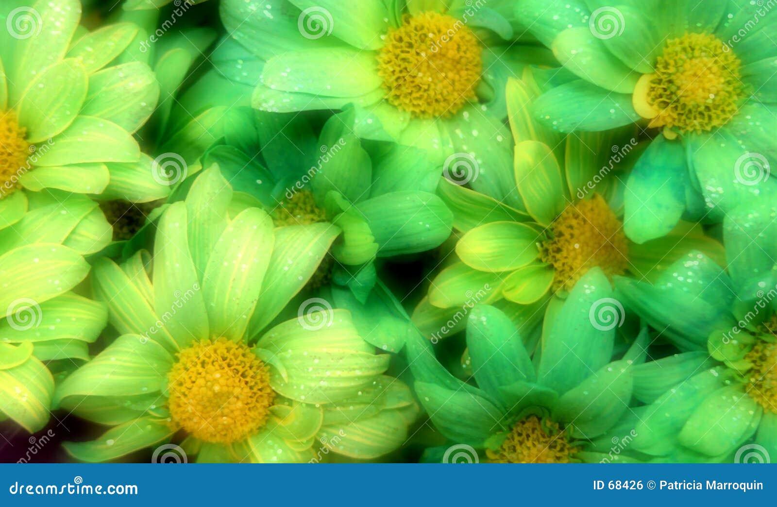 Flores do Glitter do dia do St. Patrick