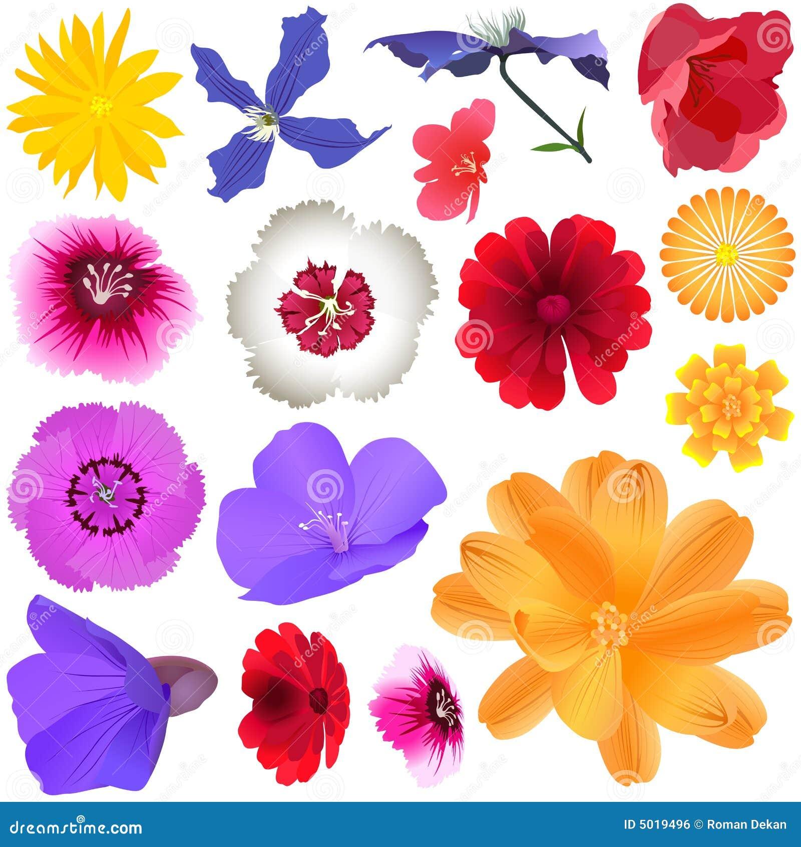 Flores Do Jardim Imagem de Stock Royalty Free  Imagem 5019496