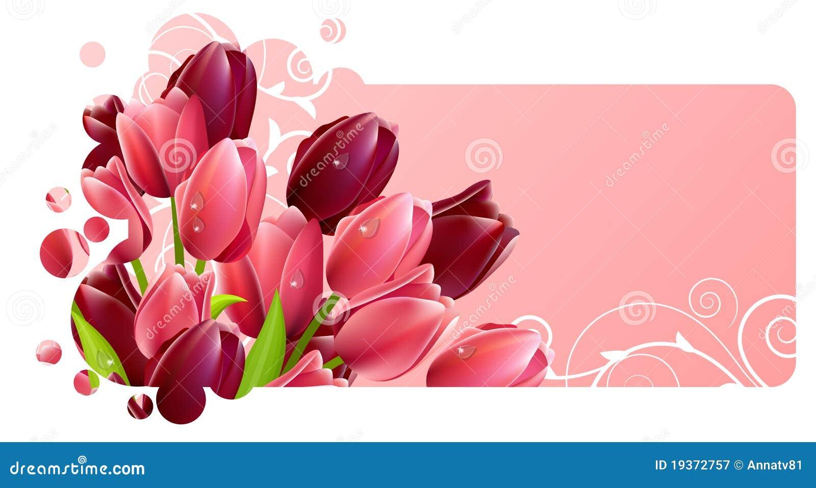 Flores do Tulip