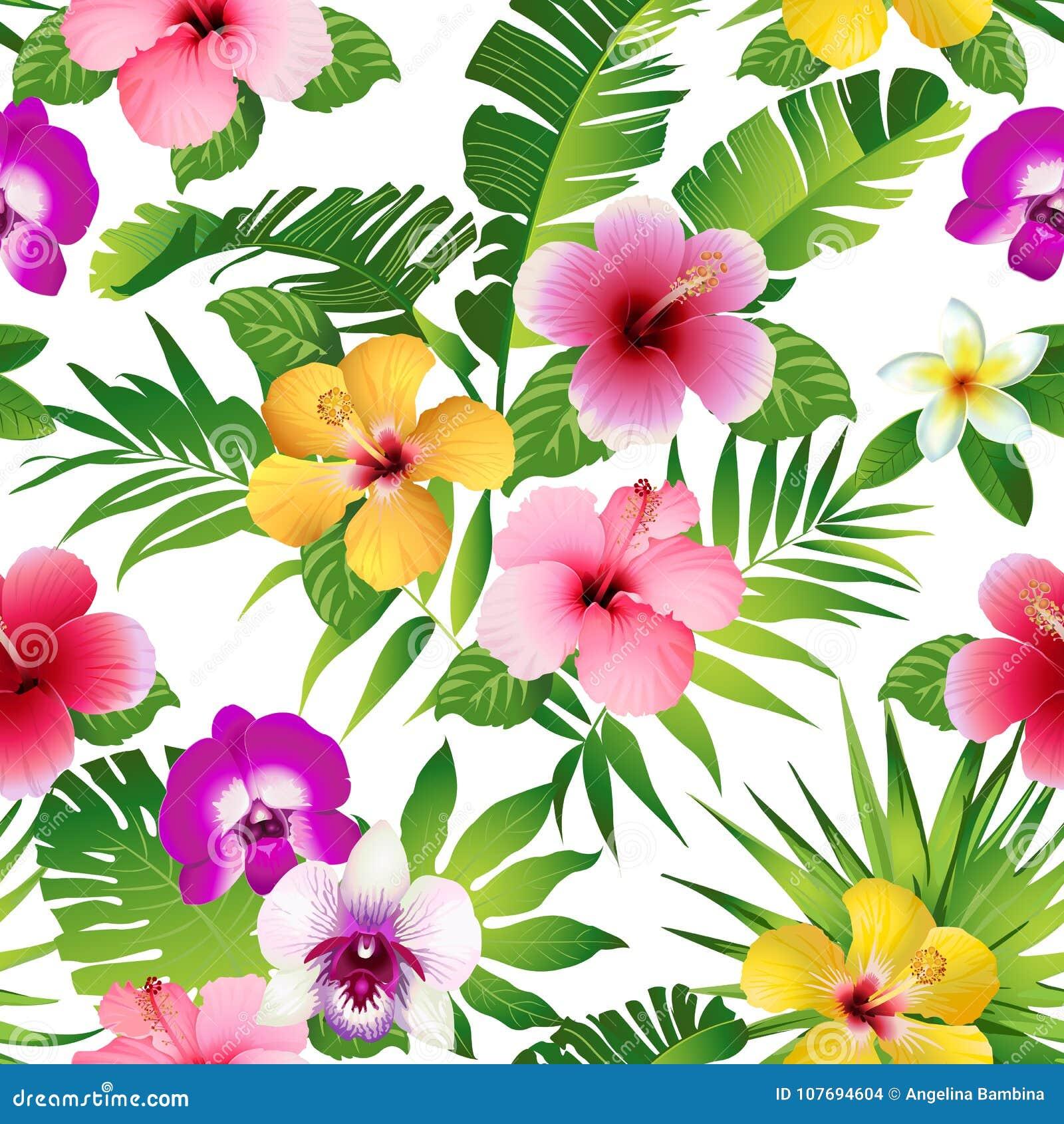 Flores e folhas tropicais no fundo branco seamless Vetor