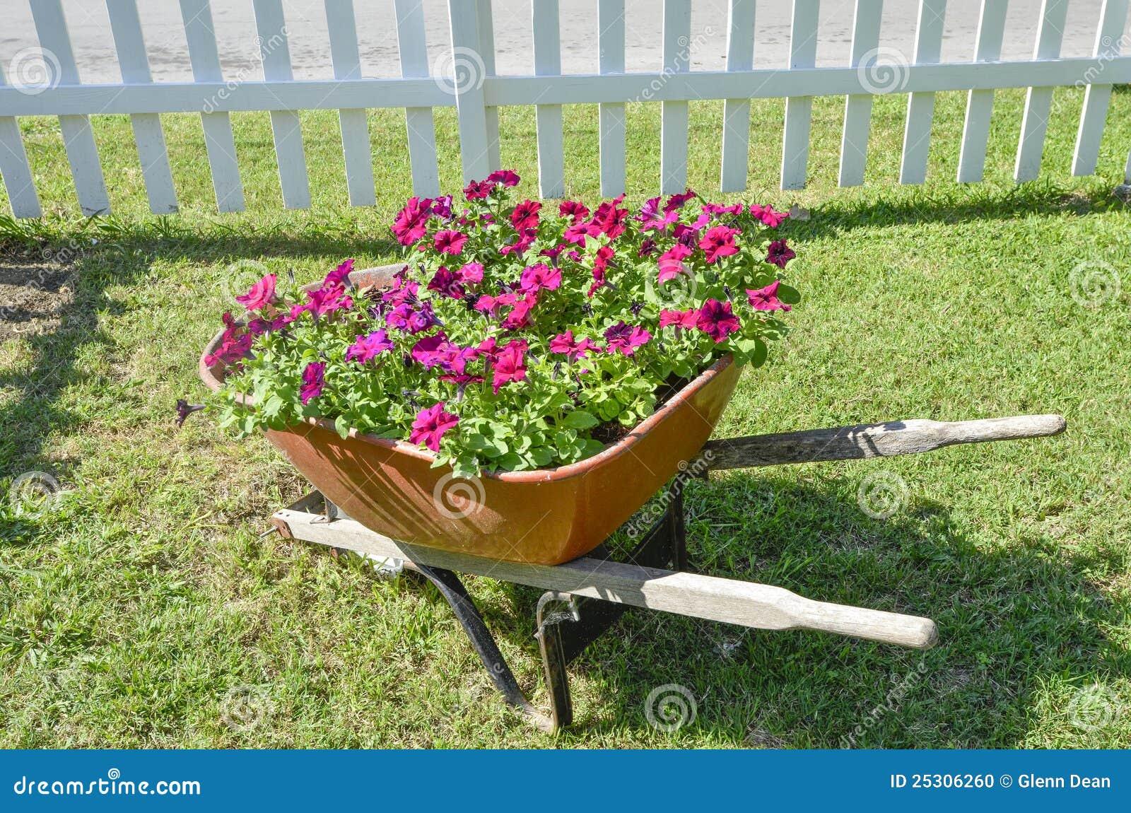 Conhecido Flores Em Um Carrinho De Mão De Roda Foto de Stock - Imagem de  QY42