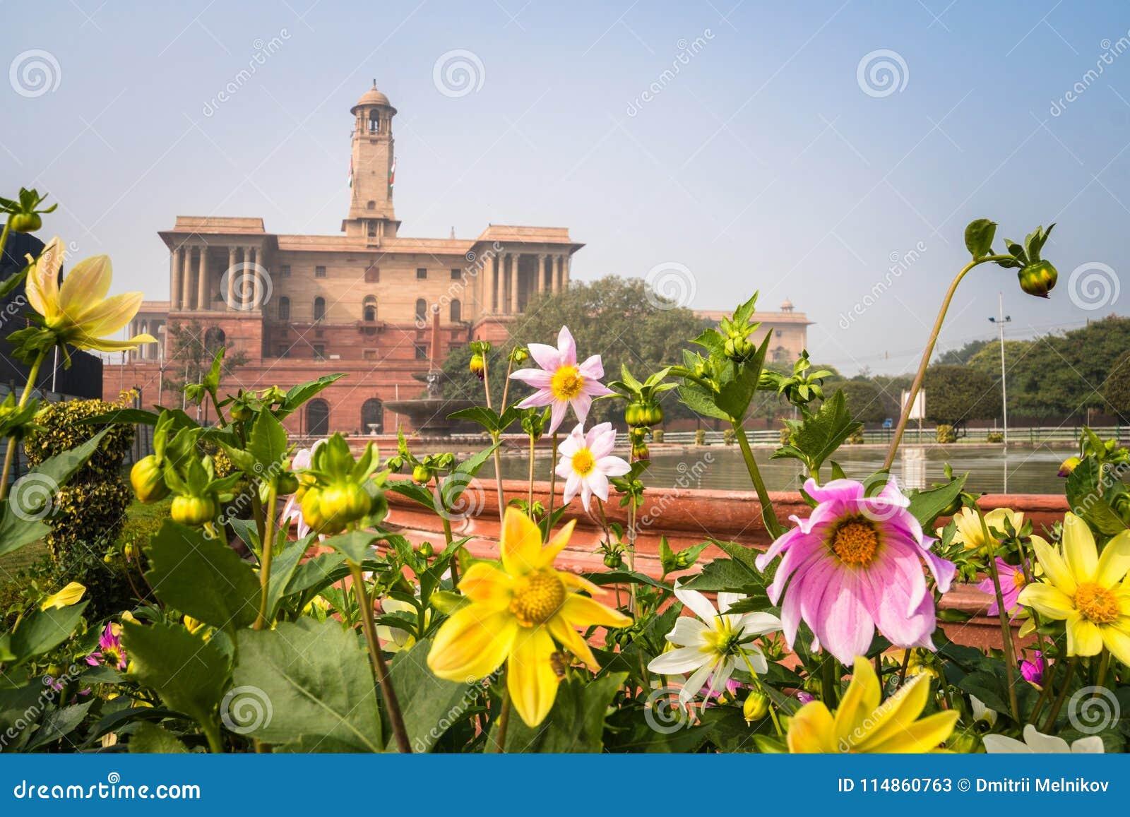 Flores em um jardim formal, jardim de Mughal, Rashtrapati Bhavan