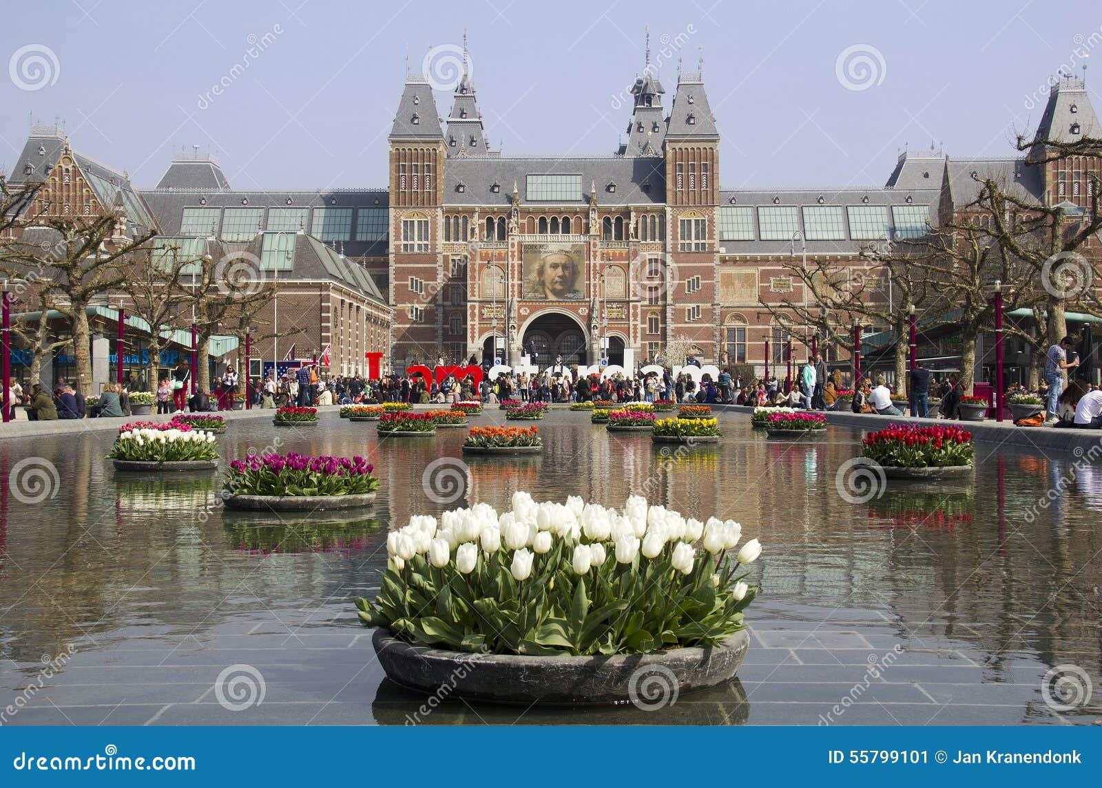flores en el rijksmuseum en amsterdam holanda